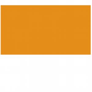 cnio-letras-corporativo-fondo-transparente_400x400